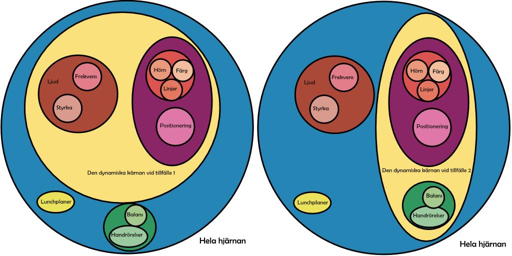 Bild som beskriver schematiskt hur Edelman tänker sig den dynamiska kärnan.